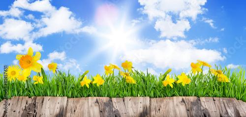 Hintergrund Karte Blumen