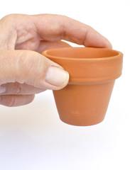 Choisir le bon pot en terre cuite