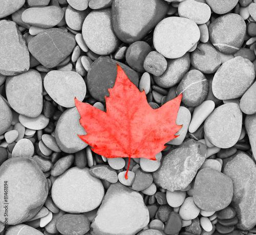 morze-kamienie-czarno-biale-zdjecie-kanada