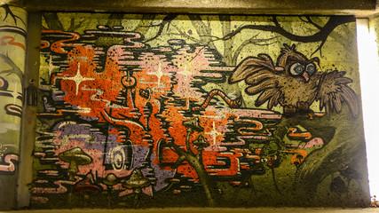 Graffity Eule