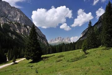 Il Sassolungo visto dalla Val Contrin