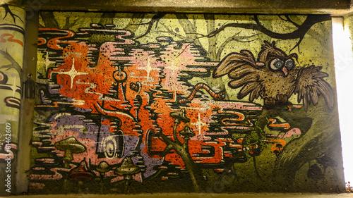 Leinwanddruck Bild Graffity Eule