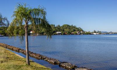 Coqueiro e lagoa