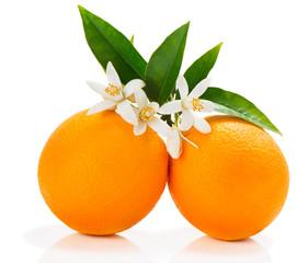 Orange fruits with blossom