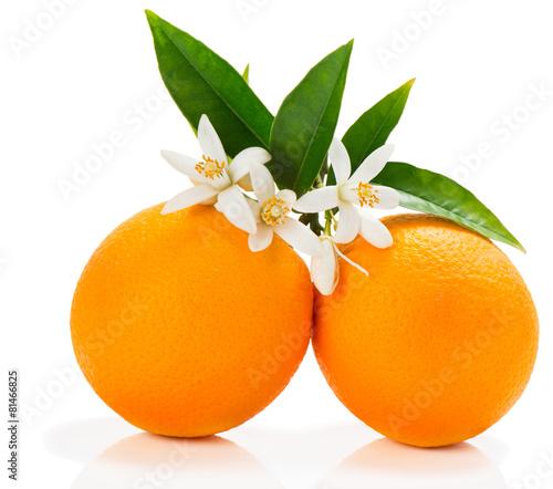 Foto op Aluminium Vruchten Orange fruits with blossom
