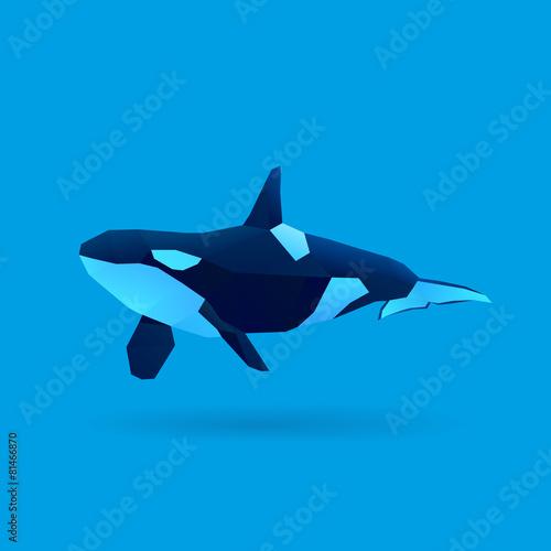 orca - 81466870