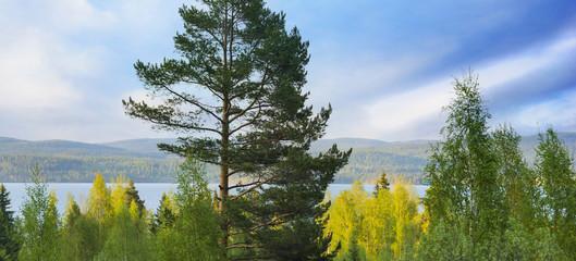 Scandinavian lake