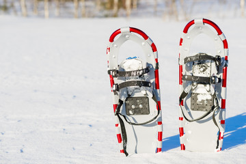 snowshoes are standing upright in the snow