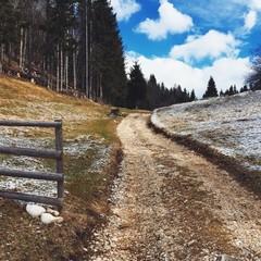 Springtime meets winter mountain road