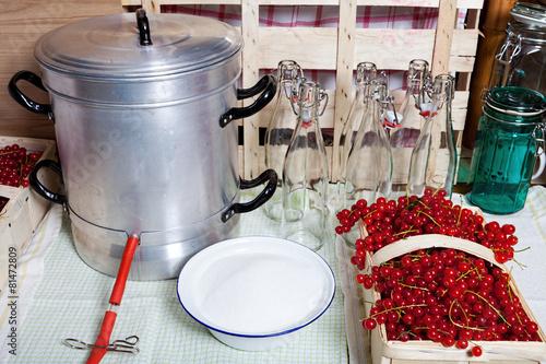 Dampfentsafter und Zutaten für Johannisbeersirup - 81472809