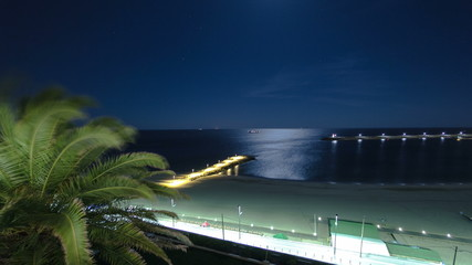 Beach of Sesimbra with pier and palm at night, Portugal