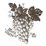grapes vector logo design template. fruit or fresh food icon.