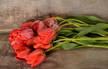 bunch of red tulips on the wooden background