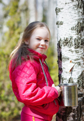 child collects birch sap in the woods