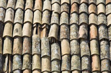 Tile roof.