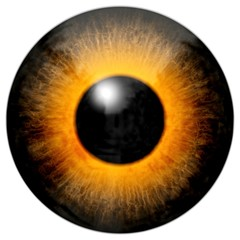 Illustration of a brown orange eye with light reflection.