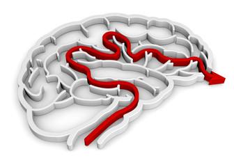 Brain Maze - 3D