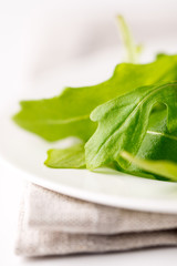 Fresh arugula leaf