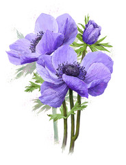 bouquet of blue spring flowers