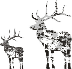 two deer silhouettes from gray trees branches