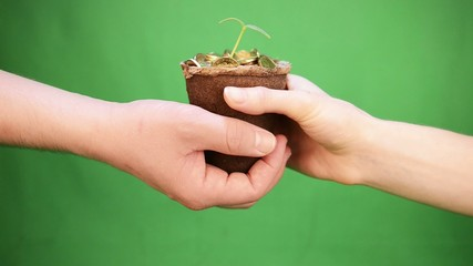 hand gives pot of money on a green background