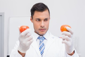 Perplex scientist holding two tomatoes