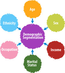 Demographic segmentation business diagram illustration