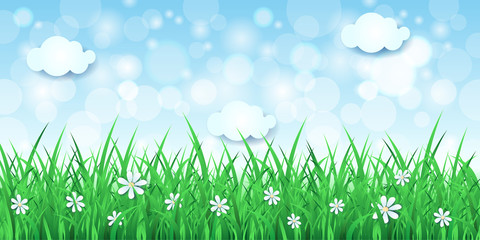 Spring background with sky and grass