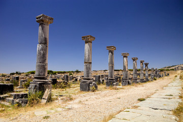 Volubilis - ruins of historical city from age of roman, Morocco