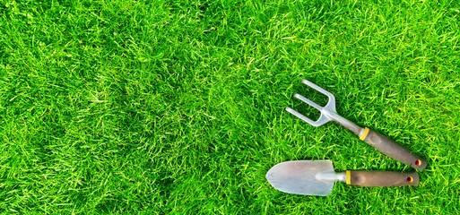 Gardening tools on green grass.