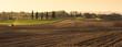 Leinwanddruck Bild - Agriculture