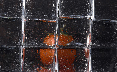 Fresh tomato behind wet ice cubes on black background. Selective