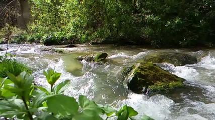 River landscape en slow motion
