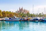 Palma de Mallorca port marina Majorca Cathedral