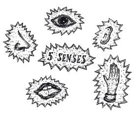 Five Human senses icons