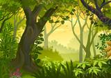 Warm climatic Jungle