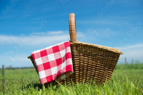 Fotobehang Picknick Picnic basket in nature