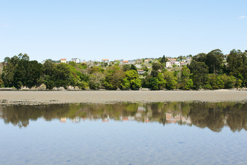 houses and trees with blue sky reflected on the beach in low tid