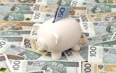 skarbonka, pieniądze, polska, banknoty, złotówki