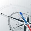 compass - 81513207