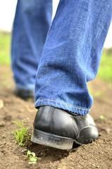 Male feet walking on the soil