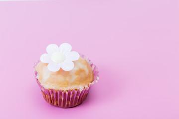 hintergrund  - leckere muffin auf pink