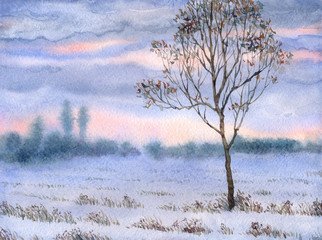 Watercolor landscape. Lonely sapling in winter steppe