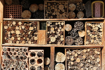 Drilled wooden pieces for insects