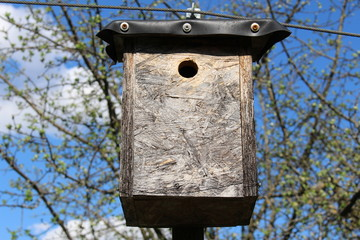 Artificial wooden bird nest in Innsbruck in Austria