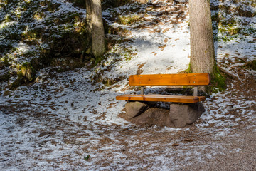 Wood and rock bench in pine forest on Dolomites mountains