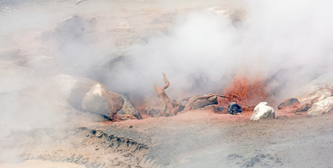 Steam and Red Mud in a Thermal Pool