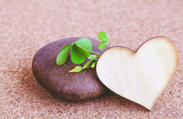 Closeup clover leaf and stone ,wooden heart on cork background.