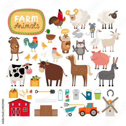 Vector farm animals - 81529460