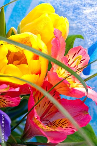 Foto op Canvas Iris Bright bouquet